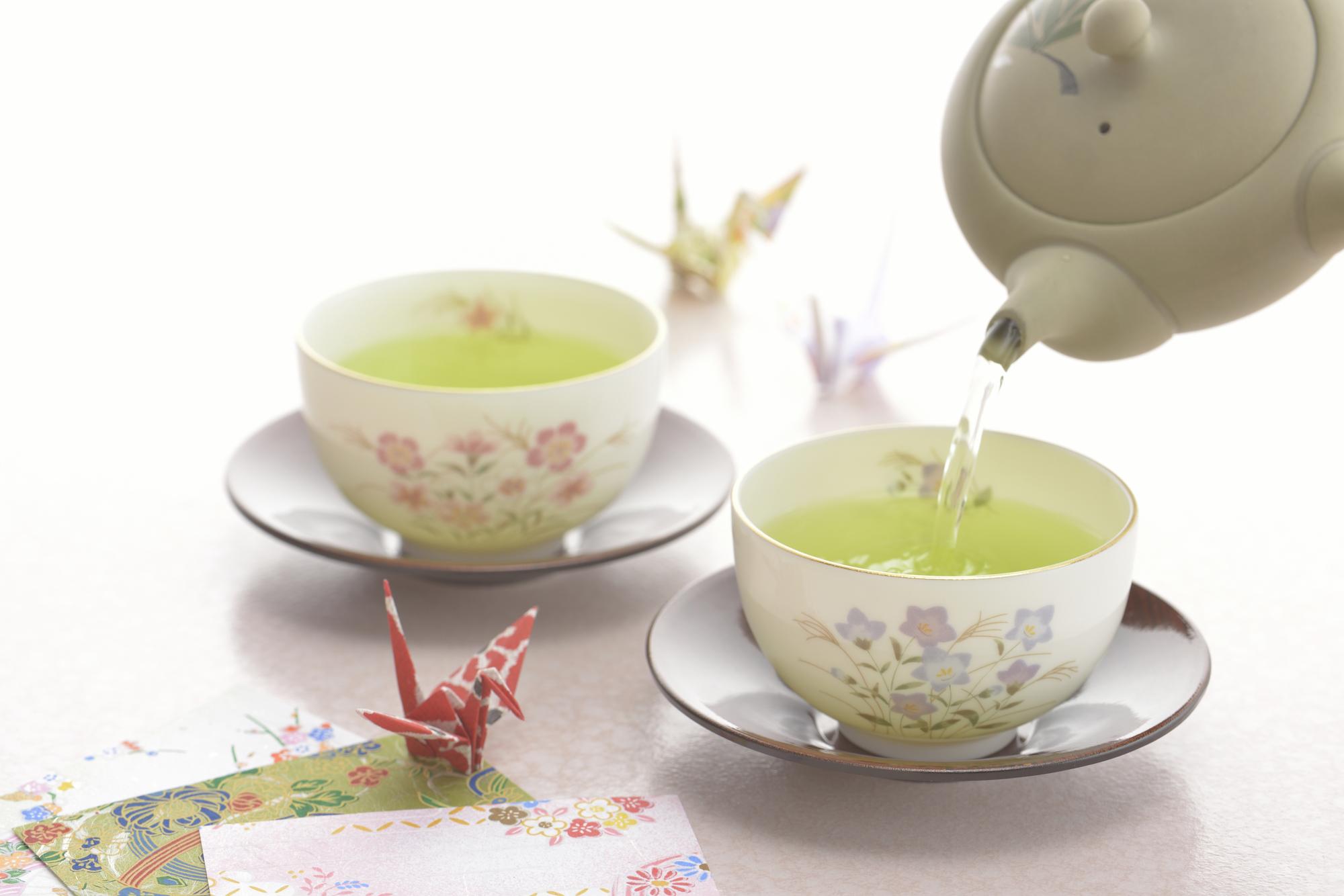 種類 緑茶