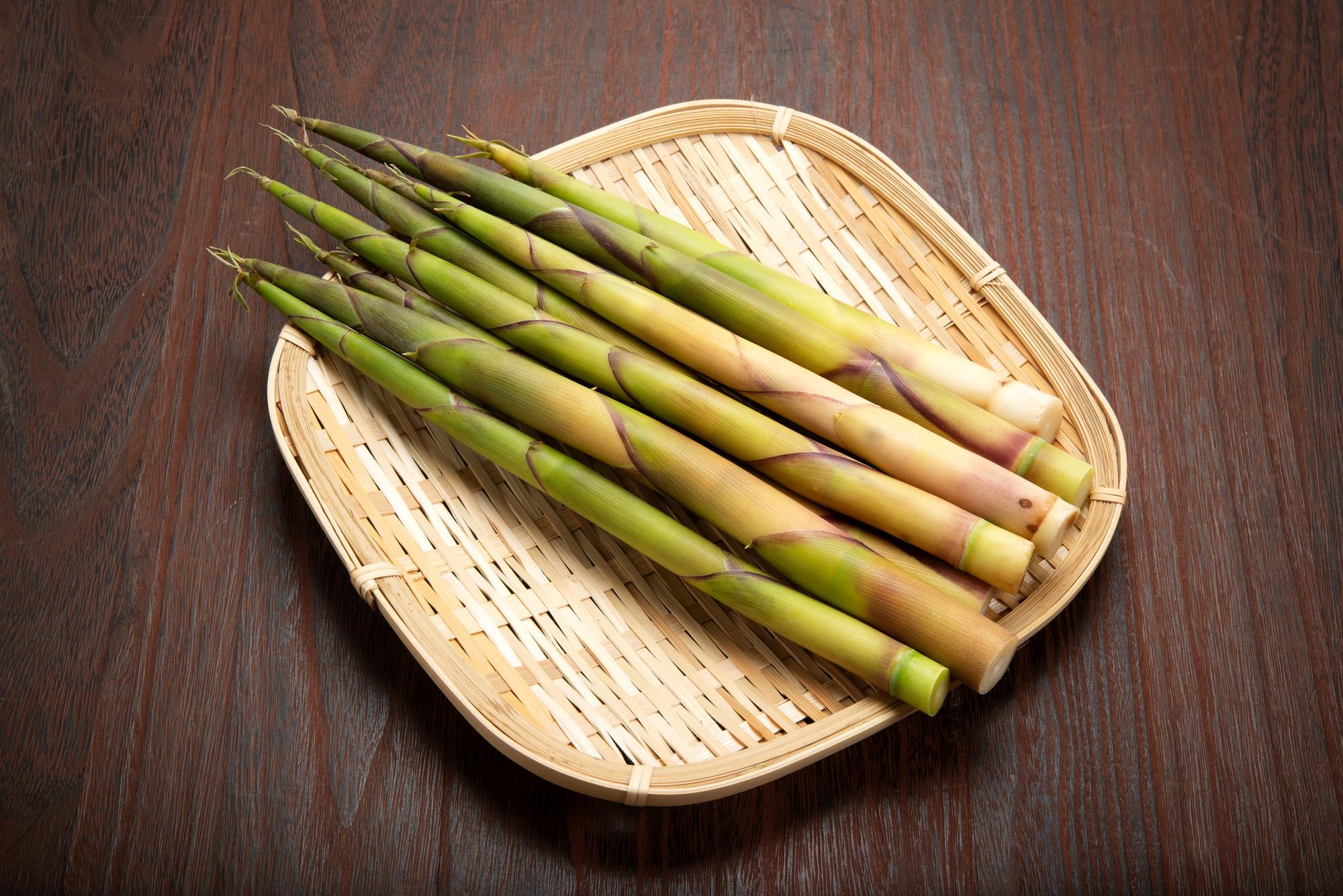 天然山菜根曲がり竹について
